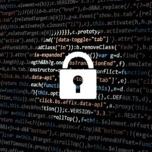The Importance of Security to a Software Development Company