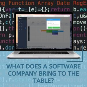 What Does a Software Company Bring to the Table?