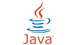 Why Our Custom Software Solutions Use Java